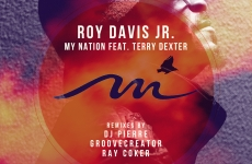 Roy Davis Jr – My Nation