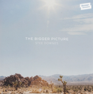 Stee Downes – The Bigger Picture